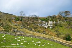 Nappa Scars, Austwick, Yorkshire Dales National Park, North Yorkshire, England South Yorkshire, Yorkshire England, Yorkshire Dales, Places In England, What A Beautiful World, England And Scotland, Country Homes, Lake District, British Isles
