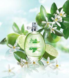 Scent Essence   Lime Verbana