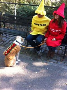 Pick out a fabulous halloween costume for you and your best pal. | 17 Fun Fall Activities For You And Your Pet