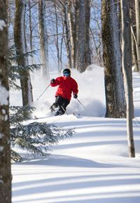 Adult Ski & Ride Group Lessons at Sugarbush Resort, VT