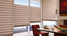 Alustra Vignette Modern Roman Shades: Hunter Douglas Window Treatments, in a white linen blackout fabric, would be beautiful on long window, at least $600, but a great long term solution