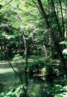 Oirase, Aomori