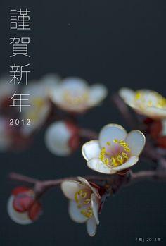 2012年 元旦 : 榮 - sakae - 簪作家ჱ ܓ ჱ ᴀ ρᴇᴀcᴇғυʟ ρᴀʀᴀᴅısᴇ ჱ ܓ ჱ ✿⊱╮ ♡ ❊ ** Buona giornata ** ❊ ~ ❤✿❤ ♫ ♥ X ღɱɧღ ❤ ~ Mon 19th Jan 2015