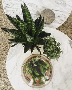 Blush interior styling II Greenery II Marble II Home deco