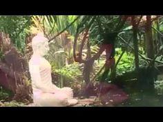 Deepak Chopra Meditation Nature