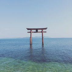 水が透き通る景色快晴の琵琶湖です. .また行きたいなぁ_. . 写真を見てよかったらいいねやコメント気軽にフォローしてください . . ハッシュタグ #写真好きな人と繋がりたい. #写真好キナ人ト繋ガリタイ. #写真撮ってる人と繋がりたい. #写真撮ッテル人ト繋ガリタイ. #カメラ好きな人と繋がりたい. #ファインダー越しの私の世界. #フォロー #写真部 #カメラ初心者 #関西写真部. . #IGersJP #followme #instafollo#follow4follow #webstagram #likeforlike #instagood . コンテストタグ #WeekendHashtagProject . #PhotoOfTheDay . #JapanHashtagProject . #instaderby . #フォトコンテストOsaka2015 . #WHPhideandseek . #whim_life