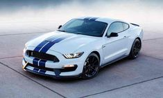 2017 Ford Mustang Shelby Release Date. At the 2014 Los Angeles auto show in November, Ford introduced the highly impressive Ford Mustang Shelby Ford Mustang Shelby Gt500, 2015 Ford Mustang, Shelby Gt500 2015, Shelby Gt 500, Ford Mustang For Sale, Mustang Cars, Shelby 2015, Ford 2016, Ford Gt500