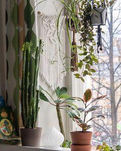 Нужно больше листьев! 🌿 ——— НА ЗАКАЗ. Панно из хлопкового шнура. Размер ~30х60 см. Стоимость 2500₽ в цветном варианте (цвет можно выбрать)…