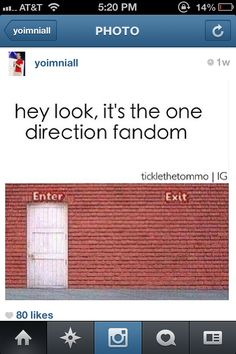 Truest thing. There's no escaping the One Direction fandom once you're in it. Resistance is futile! ;D