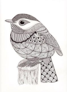 Tangled Little Flycatcher by Chris Gerstner, using a Ben Kwok Template. Sakura Micron 01 Black ink, pencil shading.