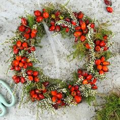 Bind autumn wreath of rosehips - ✂ Get Crafty,Herbstkranz aus Hagebutten binden Rose hips grow on every street corner and everywhere on the roadside. This year, the harvest is also particularly pr. Felt Christmas Decorations, Easy Christmas Crafts, Christmas Wreaths, Christmas Ornaments, Holiday Decor, Crochet Christmas, Thanksgiving Wreaths, Christmas Candles, Diy Spring Wreath
