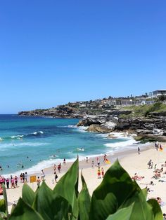 Stroll along the Bondi to Bronte Walk. The most famous walking track in Sydney combines stunning coastal views of…