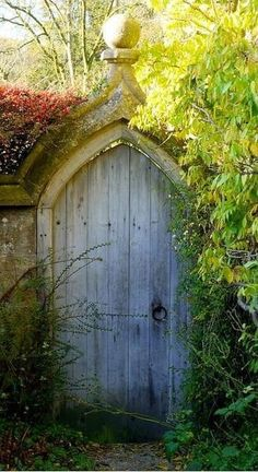 """The door to the secret garden - This was one of my favorite books when I was a kid and I would LOVE to have a cool """"secret garden"""" off in the backyard."""