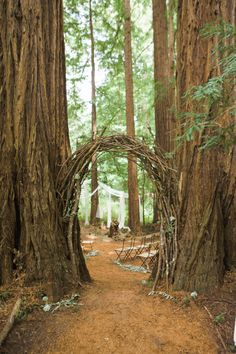 Romance in the Redwoods - A Forest Wedding <br> Set in a redwood grove, this nature inspired wedding includes pink peonies, al fresco dining under a canopy of trees and a stunning lace Claire Pettibone gown worn by the Bride. Enchanted Forest Wedding, Woodland Wedding, Redwood Forest Wedding, Wedding Forrest, Rustic Wedding, Forest Wedding Reception, Wedding Entrance, Wedding Arches, Magical Forest