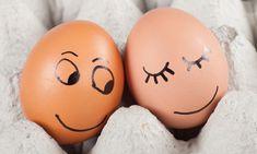 Funny Joke: Life in the Fertilized Egg Business | Funny - BabaMail