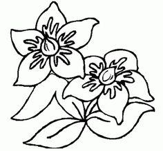 dibujos para calcar de flores faciles