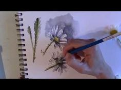 Line and Wash watercolor painting #4 - Vlog8 - YouTube