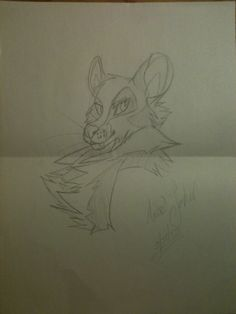 This was a sketch of a character I created. Alana, her species being related to the genet, and the mongoose.    -2013-