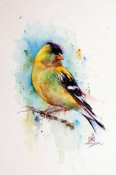 GOLFINCH aves acuarela grabado por Dean Crouser