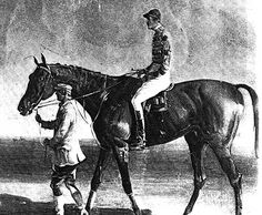 Bay Middleton(1833)(Colt)Sultan- Cobweb By Phantom. 4x4 To Sir Peter Teazle & Arethusa, 4x5 To Young Giantess, 5x5 To Herod, Eclipse & Trumpator, 5x5x5 To Highflyer. 6 Starts 6 Wins. Won England's 2000 Guineas & Epsom Derby In 1836. Leading Sire In England & Ireland In 1844 & 1849.