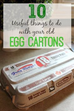 It's amazing just how many ways you can use the humble egg carton! Fun tips!