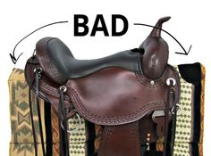 How to measure for a Western Saddle Pad - guide that explains all the different pad types and features as well as horse build each is best for