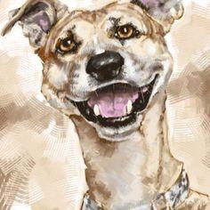 Caricaturas de Mascotas 4. Caricatura Digital. Dogs, Animals, Caricatures, Drawings, Pets, Animales, Animaux, Pet Dogs, Doggies