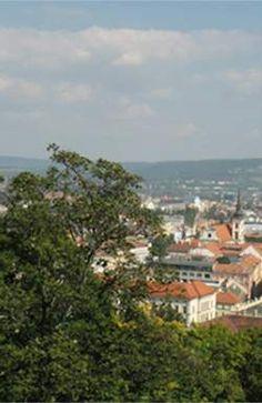Визулиализация и ее интерпретация в Брно Чехия Paris Skyline, Dolores Park, Travel, Viajes, Destinations, Traveling, Trips
