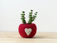 """The Globe planter - Turn Your Flower Pots Into Perfect Colored Globes  I present you """"the love pod"""" A little cozy felt ball, perfect for your succulent and air plants. An organic pod shape to..."""