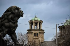 Sofia, Bulgaria Sofia Bulgaria, Lion Sculpture, Statue, Art, Art Background, Kunst, Sculpture, Sculptures, Art Education