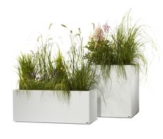 Flowerpots-Planters | Planting | Thallo | FLORA. Check it out on Architonic