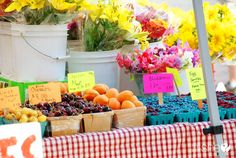 Growing Up Healthy – How to Best Shop at Farmers Markets! Great ideas on what to look for and to pass by!
