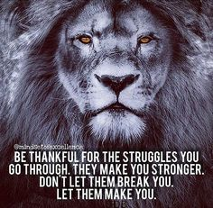 Be thankful for the struggles you go through. Don't let them break you. Let them make you.