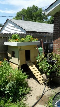 Living Roof Chicken Coops--urban garden nirvana