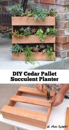 DIY Cedar Pallet Succulent Planter | 12 Creative DIY Pallet Planter Ideas for Spring | Beautiful Pallet Gardening Crafts, check it out at http://diyready.com/pallet-projects-gardening-supplies/