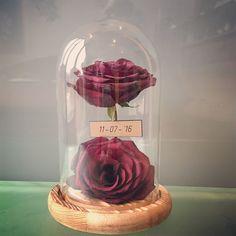 Deze twee dierbare rozen komen uit een rouwboeket. Omdat ze geprepareerd zijn, kunnen de rozen als unieke herinnering ondersteunen in het rouwproces. Ice Cream, Desserts, Food, Floral Arrangements, Manualidades, No Churn Ice Cream, Tailgate Desserts, Deserts, Icecream Craft