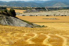 Campos de cereal alrededor de Berdun, La Jacetania, Pre Pirineos de Huesca, Aragon