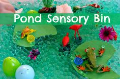 Pond Sensory Bin: Sensory activities which also function as small world play are great kids activities and fantastic boredom busters. I love it even more because they work perfectly when I need an activity which wil. Sensory Tubs, Sensory Boxes, Sensory Activities, Sensory Play, Preschool Activities, Kindergarten Science, Baby Sensory, Spring Activities, Infant Activities