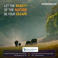 Purest joys are in enjoying life with simplicity. Visit Igatpuri and wake up to scenic surroundings and fresh local food. #FreedomOfLife