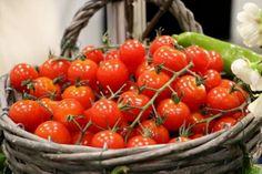 Garden Inspiration - New ideas Organic Gardening, Gardening Tips, Healthy Crackers, Vegetable Garden Planning, Seed Packets, Plant Needs, Growing Plants, Garden Pots, Garden Ideas