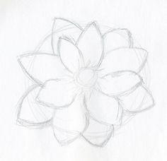 Easy Lotus Flower Drawings