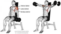 Seated dumbbell lateral raise exercise