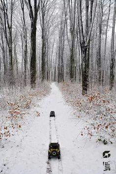 RC winter