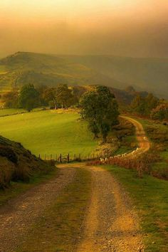 Winding Country Lane