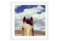 Kevin Russ, Cloudy Horse Head