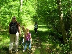 Bird Watching for Beginners Great Falls, Virginia  #Kids #Events