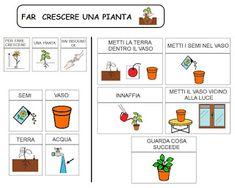 comuniCAAzione: Far crescere una pianta