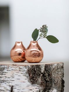 Copper and birch