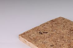 Myco Board Made from Mushroom. Cheaper Than Traditional Plywood. Structural Biocomposites   Ecovative Design