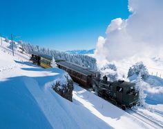 Am 21. Mai 1871, vor also mehr als 140 Jahren, wurde die Vitznau-Rigi-Bahn als europaweit erste Bergbahn eingeweiht. Im letzten Jahr transportierten die Rigi Bahnen 650'000 Passagiere auf die Rigi, den beliebtesten Ausflugsberg der Schweizer. Mehr Infos unter www.rigi.ch.